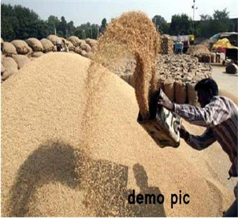 purchase of crops  farmers  dharna
