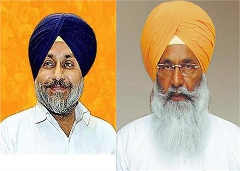 political parties  punjab  majitha  alliance